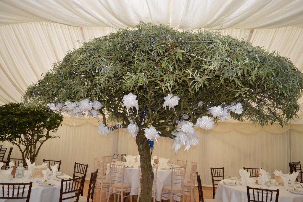 mahogany-chiavari-wedding-chairs (2)